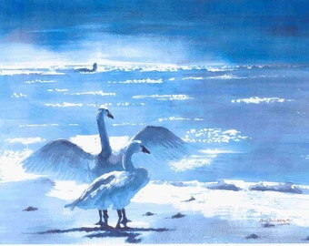 2000 Blue Swans watercolor painting print from original, made by seller, signed