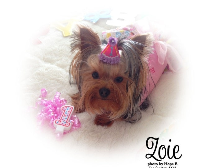 Birthday Party Hat for DOGS, Dog Bow Party Hat, Birthday Girl, Pink Dog Hair Bow