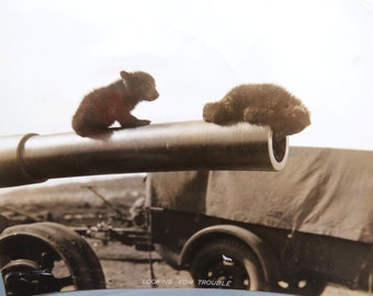 Bear Cubs on Cannon Snapshot - Looking for Trouble - Little Brown Bears at Play, Sepia Photo 9 1/2 x 7 3/4