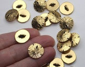 Gold Sand Dollar Buttons, 2+ TierraCast Antiqued & Plated, Lead Free Pewter, Unique Shell Clasp Alternative, 2mm Shank, 16.25mm Wide
