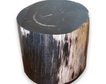 Petrified Wood Stool PF-2070 (1 of 2)