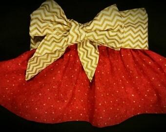 Big Bow Skirt