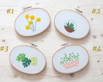 DECORATIVE plants - oval frame. Terrarium. Craspedia. Monstera. Pot.