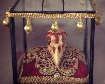 SALE CLEARANCE Art Crow Skull Reliquary The Morrigan Gothic Shrine Decorative Dark Macabre