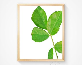 Leaf art print, home decor, Art prints, Wall prints, leaf print, leaf wall art, graphic left print, nature print, nature, leaf art