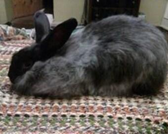 Black Angora Rabbit Fiber (0.5 ounces)