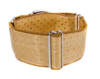 Martingale collar, greyhound collar, 2 inch, dog collar, martingale, gold, collars,pets,martingale collars