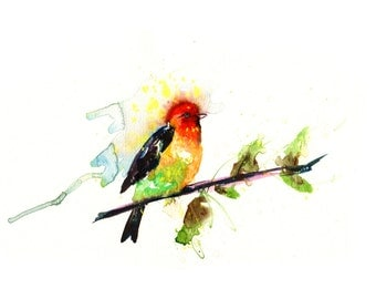Contemporary Watercolour ART PRINT Original LIMITED Edition Signed bird On Watercolour 300 gsm Paper Free Shipping To United Kingdom