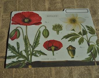 Cavallini & Co. Botany File Folder, junk journal, journal cover.