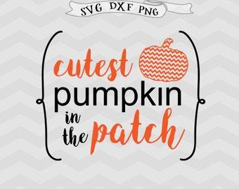 Cutest Pumpkin In The Patch SVG File Pumpkin Cut File Cricut downloads Thanksgiving SVG File Fall Autumn Cut File Cricut, Silhouette files