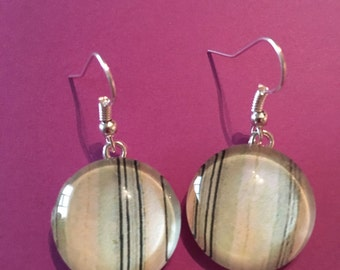 Pink and Brown Circle Earrings