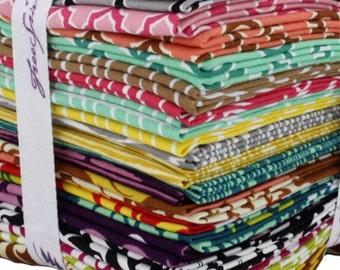 True Colors Collection Joel Dewberry Fat Quarter Bundle from Free Spirit