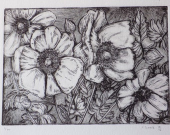 Anemone flowers drypoint print