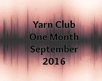 September 2016 - One Month - Yarn Club - Monthly Subscription Box
