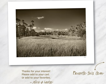 Signed 12x18 Black & White Fine Art Photo Warm Tone. Crystal River, Florida. Matted to 18x24