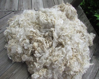 Hand washed Natural Ivory Wensleydale Wool Locks 2 oz
