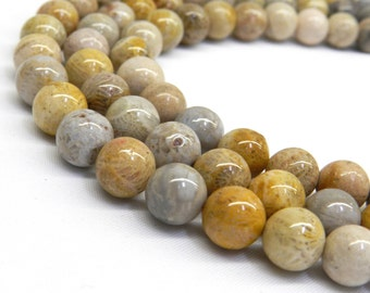 Fossil Coral Beads, Fossil Coral, Fossil Beads, 8mm Beads, 6mm Beads, 8mm Gemstone, Natural Gemstones, Agatized Coral, Coral Beads, Mustard