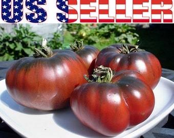 30+ ORGANIC Brandywine Black Tomato Seeds Heirloom NON-GMO Beefsteak Productive