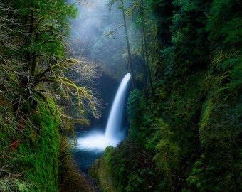 Metlako Mood, waterfalls, waterfall, forest, oregon, wall art, landscape, photography, photo, nature, photo, print,
