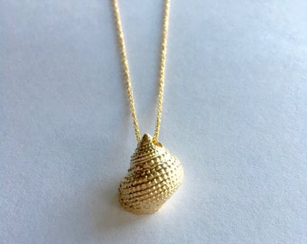 Gold conch seashell beach theme necklace on gold dainty chain