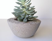 Concrete Succulent planter/candle holder