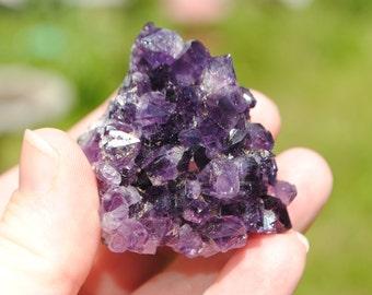 Amethyst Grape Cluster