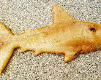 Shark of Silver Oak