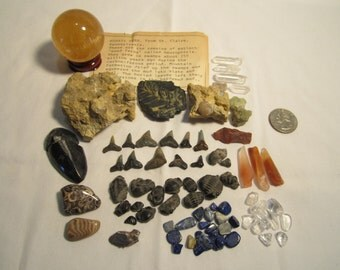 Fossil & Gem Collection!!! Trilobites Crystals and More!!!