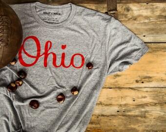 Script Ohio T