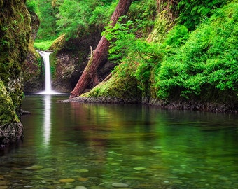 Fine Art Photo Print Punchbowl Falls Eagle Creek Columbia River Gorge Oregon Pacific Northwest Waterfall Green Landscape Nature Photography