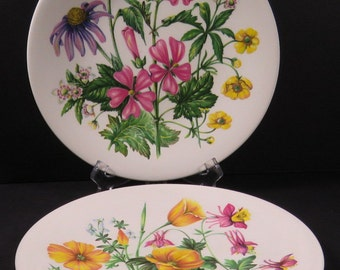 Enoch Wedgewood England Avon 2 Plates Wild  Flowers of the United States Vintage