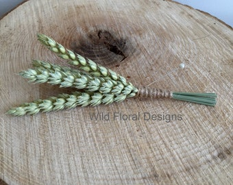 A dried Wheat, Corn buttonhole, with twine
