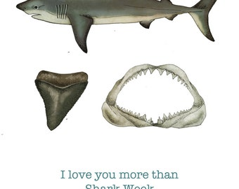 I Love You More Than Shark Week Card
