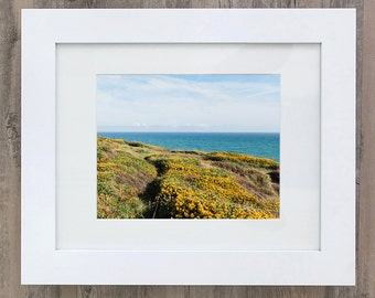 Flowers on the Copper Coast - Fine Art Print (Print Only)