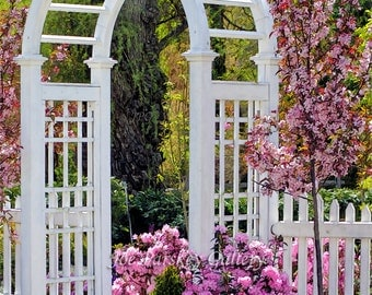 Entrance To The Garden, West Hartford, CT, pink flowers, Spring in bloom, garden arch, wall art, photo art, archival print by Joe Parskey