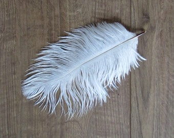 "White Ostrich Feathers (6-8"")"