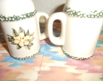 Magnolia Salt & Pepper Shakers Pottery