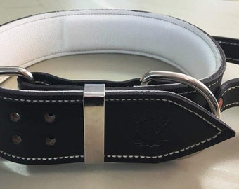 Black & White Leather Dog Collar with a Handle for Firm Control - 2 inch wide