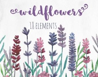 Wildflowers clip art Watercolor lavender Purple flower clipart Floral hand painted Pink flowers Botanical clip art Garden flowers violet
