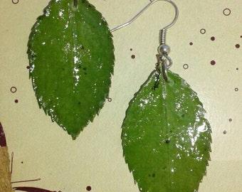 Real dry leaves hadmade earrings