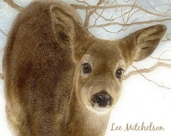Deer Art, Wildlife Art, Wildlife Art Print, Wildlife Painting