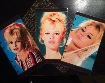 Hand made laminated dashboards- Iconic Brigitte Bardot in color