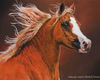 Arabian Mare, an original pastel artwork by Amanda Smith-Mitchell