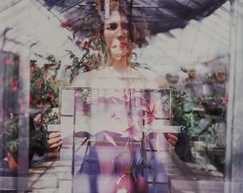Greenhouse #2-10 x 10