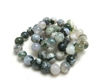 1 Strand 8mm Natural Tree Agate Gemstone Beads Round (B85c8/151a4)
