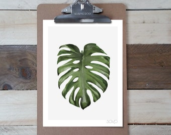 Table block note photo print sheet Monstera. Botanical and tropical décor.