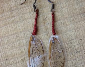 Cicada Wing Earrings