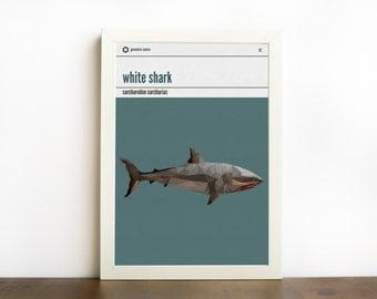Shark art print, shark wall art, shark decor, white shark print, animal art, shark room decor, kids decor, geometric animal, geometric shark
