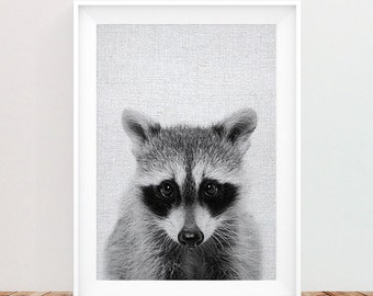Racoon Print, Woodlands Animal, Nursery Decor, Wall Art, Kids Room, Forest Animal, Black and White Printable Instant Download, Woodlands Art