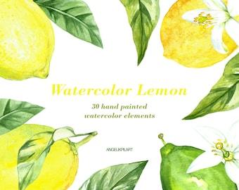 Lemon Watercolor Clipart. 30 Watercolor Elements(lemon fruit, flowers, leaves) wedding invitation, floral, greeting card, diy clip art.